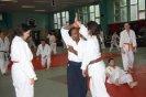Aikido Yoshinkan Seminars 2010