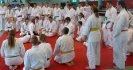 Aikido Yoshinkan Seminars 2007_12