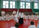 Aikido Yoshinkan Seminars 2007_23