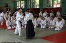 Aikido Yoshinkan Seminars 2009_14