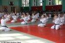 Aikido Yoshinkan Seminars 2009_3