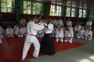 Aikido Yoshinkan Seminars 2009_5
